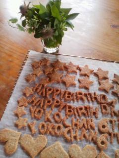 SABRE for decoration CAKE。